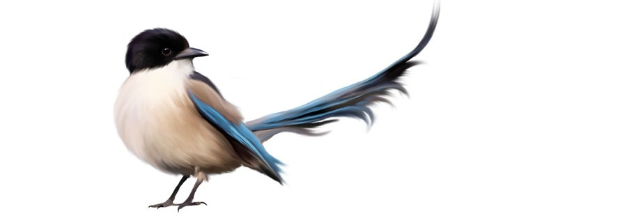 Птици